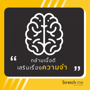 กล้ามเนื้อดีเสริมเรื่องความจำ by Stretch me